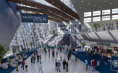 Anatomical Society Virtual Winter Meeting 2021