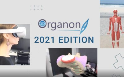 The most advanced Extended Reality (XR) anatomy platform is now available in 15 languages!